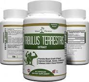 khasiat tribulus terretris