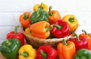 Kebun Paprika Tanpa Greenhouse