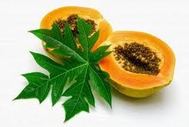 ramuan obat sakit maag tradisional 3