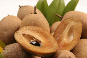 Khasiat buah sawo manila bagi kesehatan