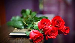 Ciri-ciri bunga mawar yang cantik