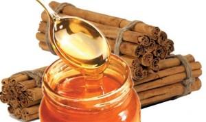 kayu manis dan madu
