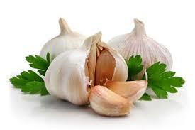 manfaat bawang putih satu