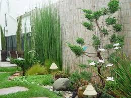 budidaya tanaman bambu air, satu