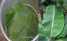 manfaat tersembunyi daun pisang, dua