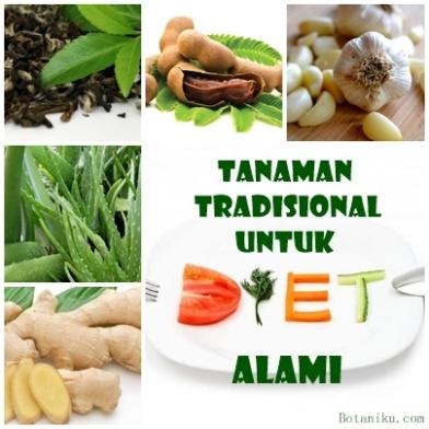 Tanman tradisional untuk diet